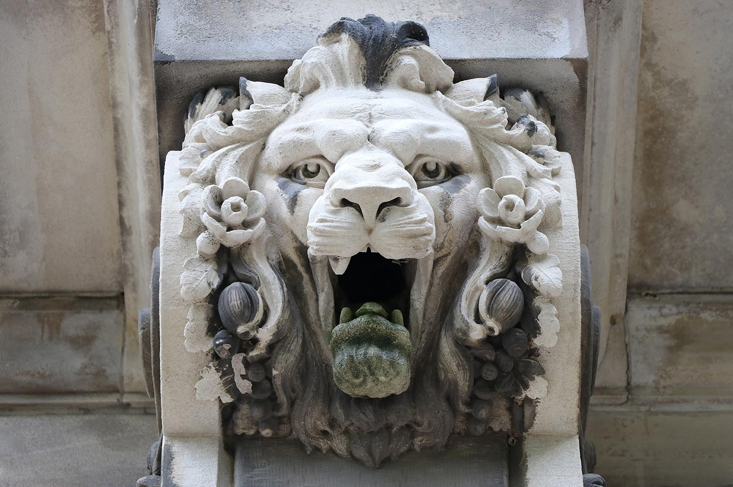 Detail view of a Lion Head decoration on Guerin Hall